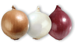 Onions in three colours